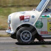 Mini Sport Large Flying Flag Sticker
